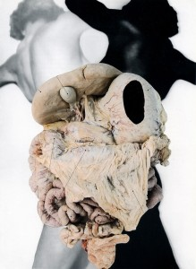 organs_20x27